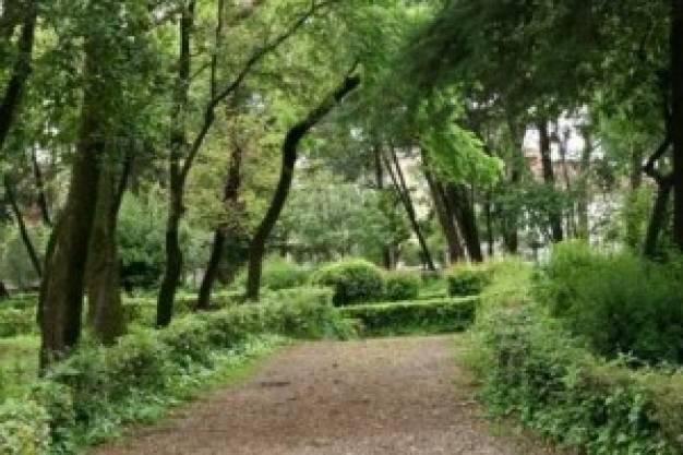 Aγώνας για τη σωτηρία του Παπαστράτειου Πάρκου στο Αγρίνιο