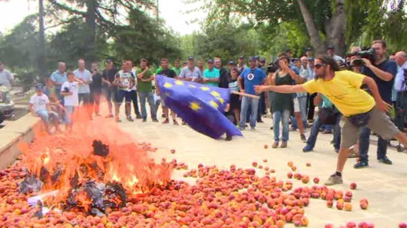 Ισπανοί ροδακινοπαραγωγοί τα σπάνε - Οι δικοί μας περιμένουν αποζημιώσεις