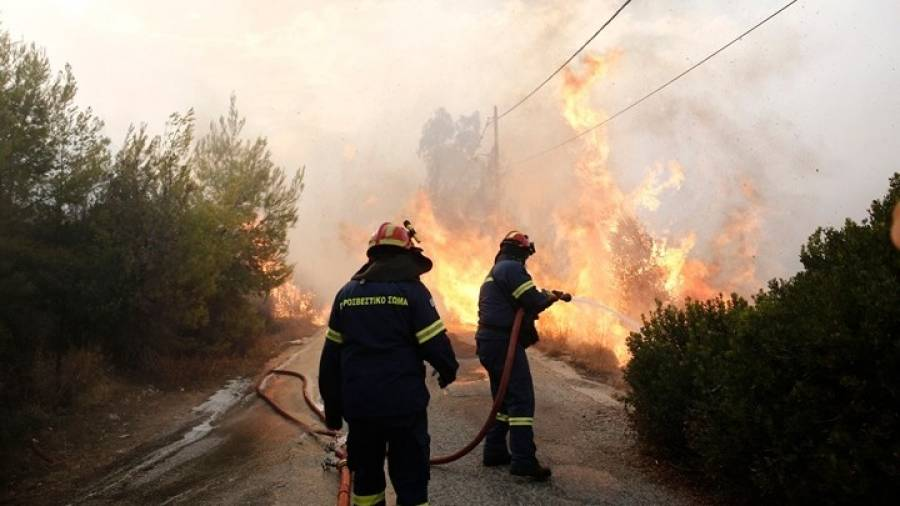 f88d65a37f4 Σε εξέλιξη παραμένει η μεγάλη πυρκαγιά που κατακαίει δασική έκταση στην  περιοχή κοντά στο χωριό Δαφνιώτισσα